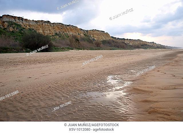 Matalascañas, Doñana Natural Park, Beach, Beaches