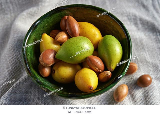 Fresh Argan fruits and nuts from Morocco