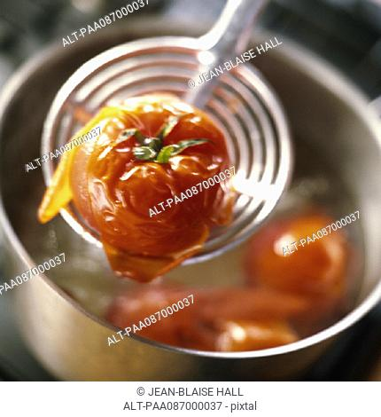 Close-up of cooked tomato held on skimmer over pot