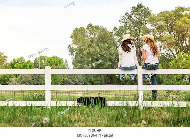 Rear view of young adult sisters in cowboy hats sitting on ranch fence, Bridger, Montana, USA