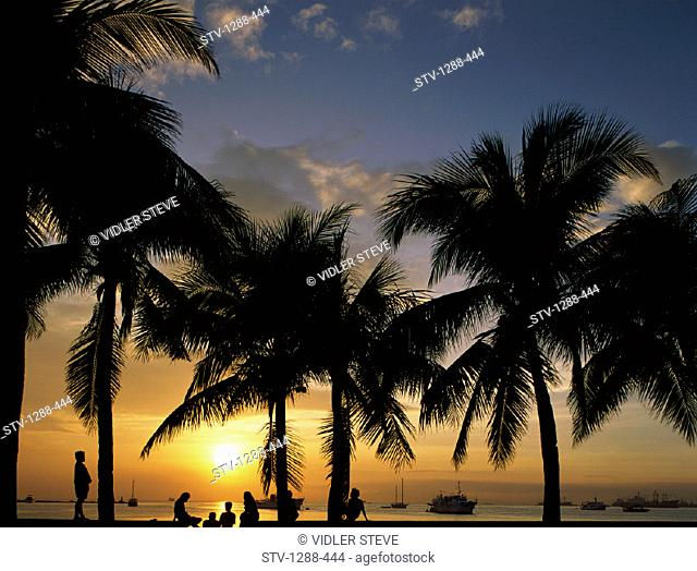 Bay, Holiday, Islands, Landmark, Manila, Manila bay, Oceania, Pacific, Palm trees, Palms, Philippines, Asia, Silhouette, Sunset