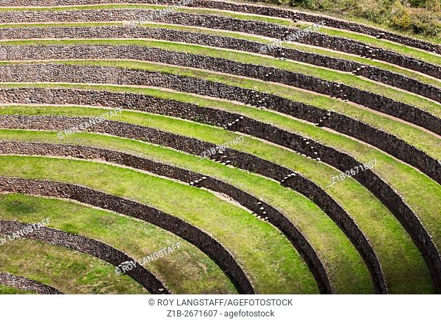 Incan agricultural terraces at Moray, Peru