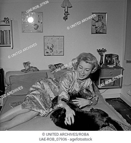 Die Fernsehansagerin Angelika Feldmann speilt mit ihrer Katze, Deutschland 1950er Jahre. TV presenter Angelika Feldmann playing with her cat, Germany 1950s