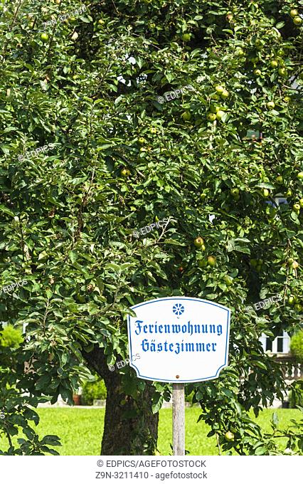 sign saying - holiday apartment, rooms for rent- in front of an apple tree, kochel am see, bavaria, germany
