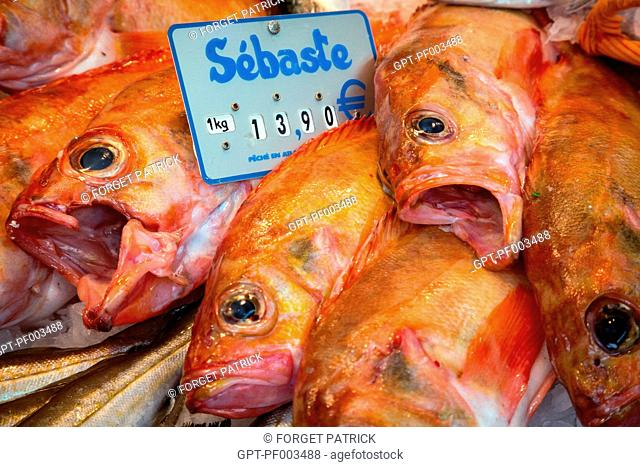 OCEAN PERCH AT THE FISH STAND, COVERED VEGETABLE MARKET OF CHARTRES (28), FRANCE