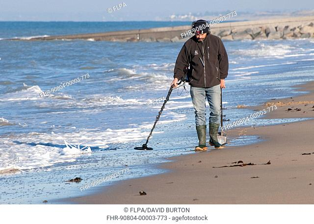 Man using metal detector on beach, near Granville, Manche, Normandy, France, December