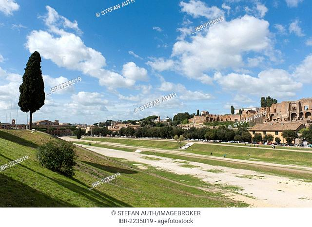 View across the unbuilt area of Circus Maximus on the Palatine Hill, Circo Massimo, Palatino, ancient Rome, Rome, Lazio, Italy, Southern Europe, Europe