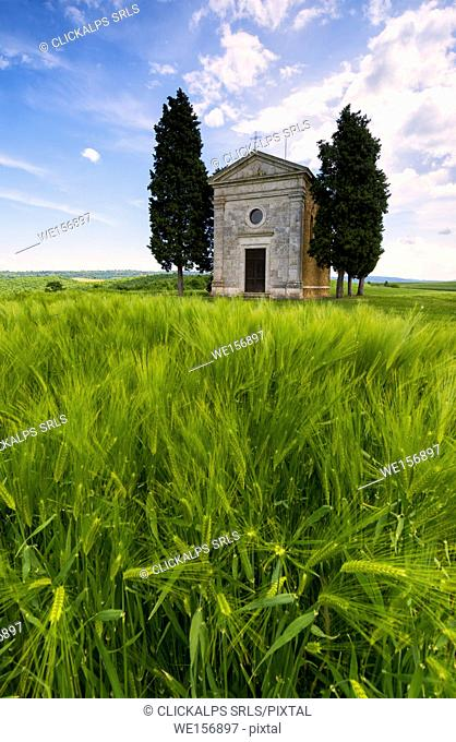 Chapel of Vitaleta in Orcia Valley, Tuscany district, Siena province, Italy, Europe