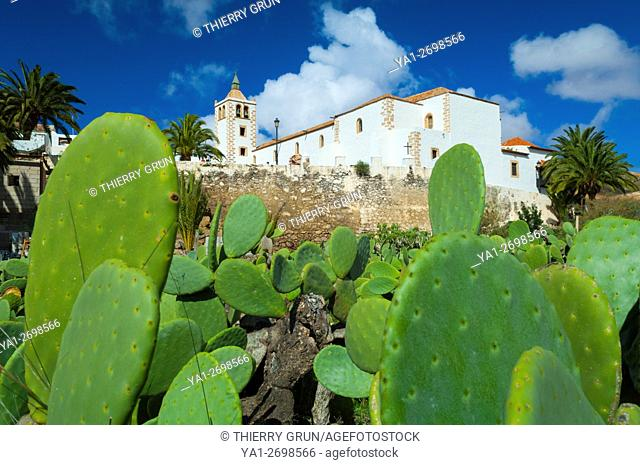 Spain, Canary islands, Fuerteventura, Betancuria village,