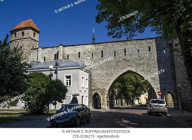 Sauna Tower (Saunatorn) and Monastery Gate (Kloostrivärav). Tallinn City Walls (Tallinna linnamüür). Old Town, Tallinn, Estonia, Baltic States