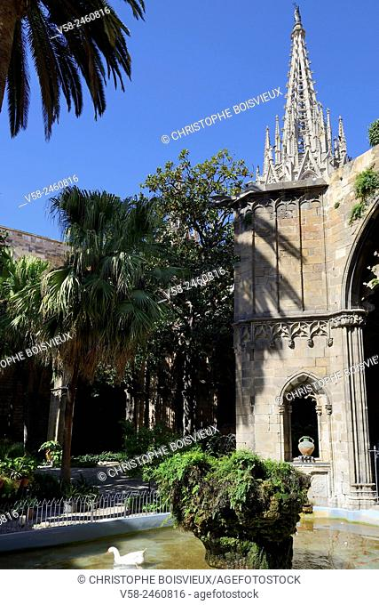Spain, Catalonia, Barcelona, Cathedral of the Holy Cross and Saint Eulalia (13-15th C), The cloister