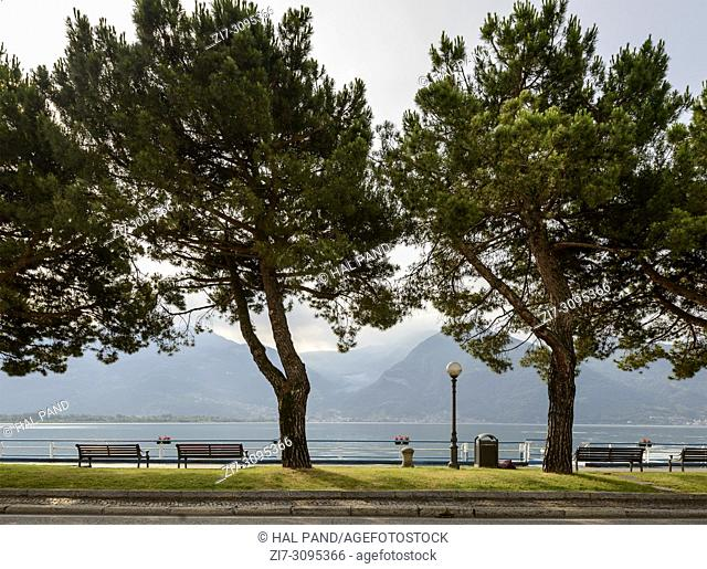 view of benches and trees on footpath at lakeside, shot in bright summer light on Sebino lake at Lovere, Bergamo, Lombardy, Italy