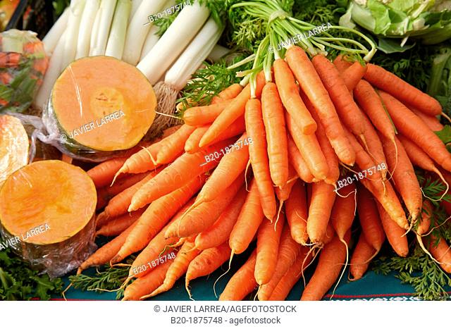 Carrots, Natural Agricultural Products, Hondarribia, Gipuzkoa, Spain