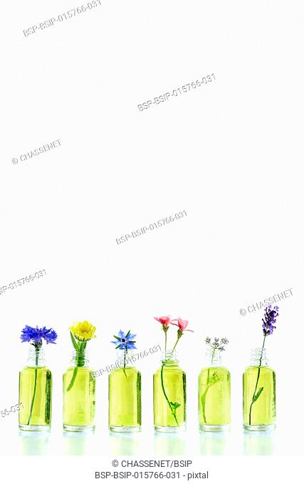 Different healing flowers in small glass bottles on white