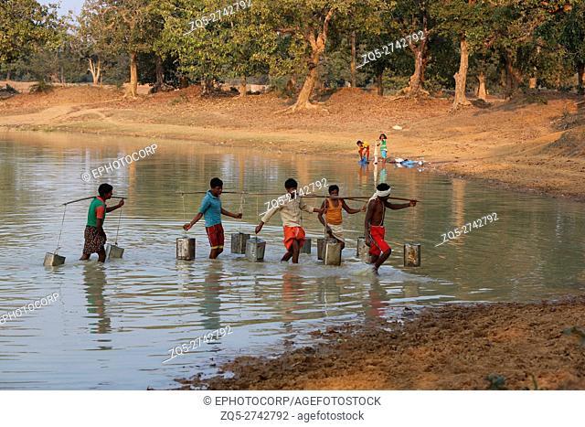 Men fetching water from a lake, BHATRA TRIBE, Paratola, Tahsil Bakawad, Dist Jagadalpur, Chattisgarh, India