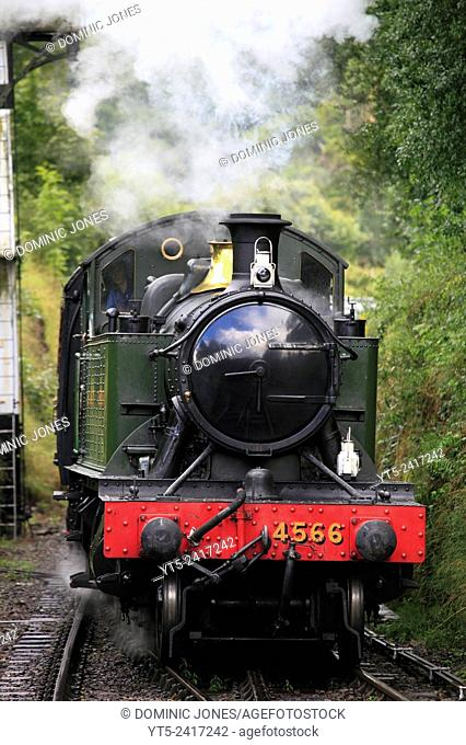 A GWR Large Prairie Tank engine approaches Arley Station with an afternoon passenger train, Severn Valley Railway, Worcestershire, England, Europe
