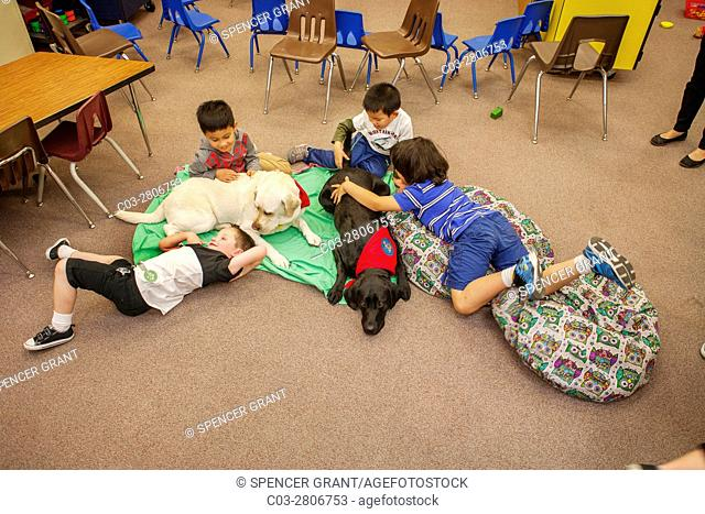 Multiracial young students hug a therapy dog on the floor of an elementary school classroom in Mission Viejo, CA