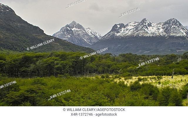 Landscape of Tierra Del Fuego, near Ushuaia, Argentina