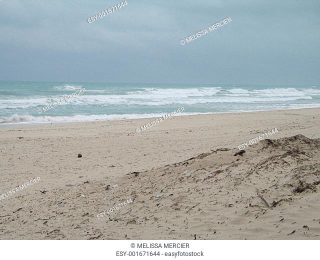 tropical ocean view