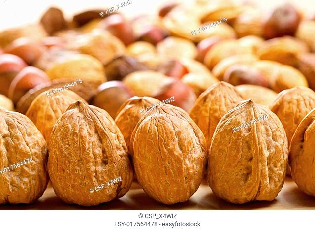 Whole walnuts with variety of nuts on background