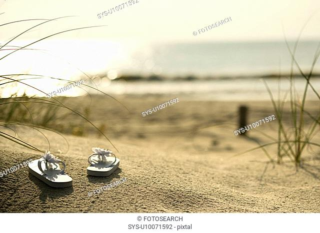 Two white sandals on sandy beach with ocean in background