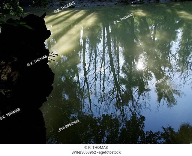 bayou of Danube, Austria, Lower Austria, Danube area, Orth / Danube