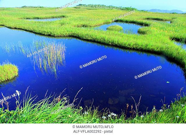 Wetlands in Higashitagawa County, Yamagata Prefecture