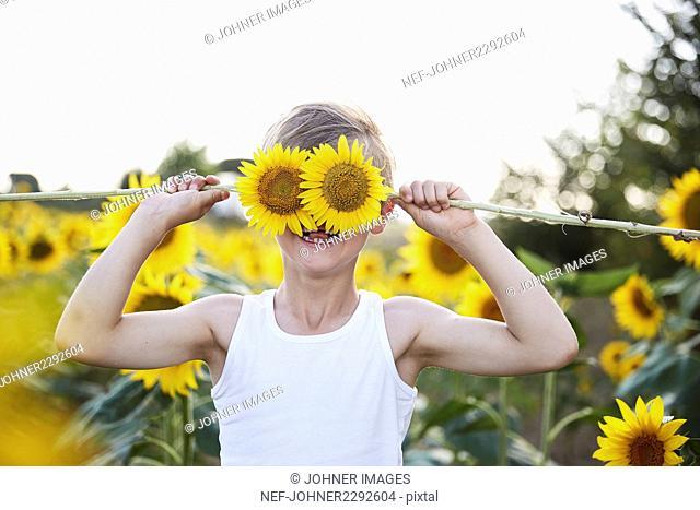 A child in a sunflower field
