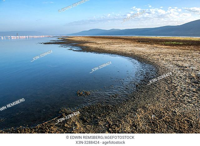 A shoreline of Lake Nakuru runs far into the distance in Lake Nakuru National Park, Kenya