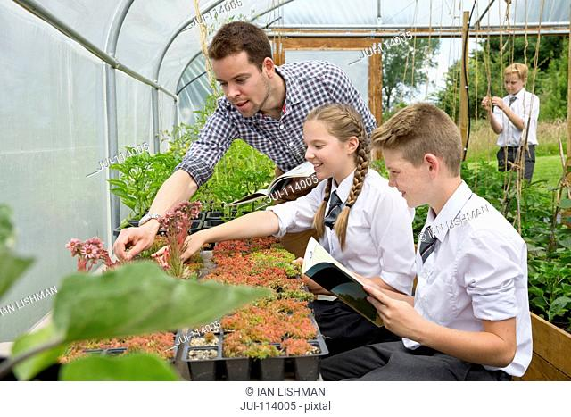 Teacher and middle school students learning gardening in plant greenhouse