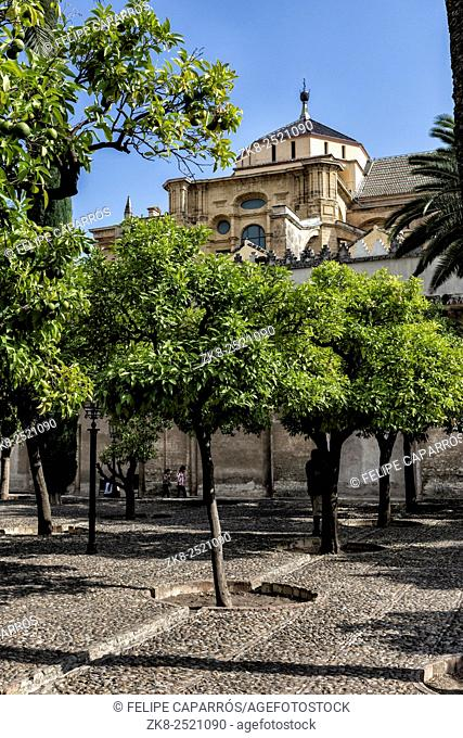 CORDOBA, SPAIN: Exterior of Mosque-Cathedral, a medieval Islamic mosque that was converted into a Catholic Christian cathedral, UNESCO World Heritage Site