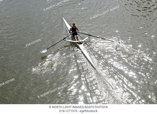 Canada, BC, Fort Langley.  A single sculler rowing in the Head of the Fort rowing regatta