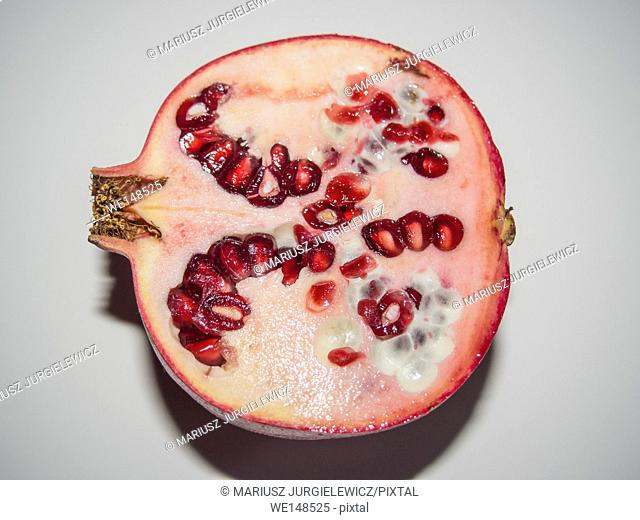 Pomegranate (Punica granatum) is a fruit-bearing deciduous shrub or small tree growing between 5 and 8 m (16 and 26 ft) tall
