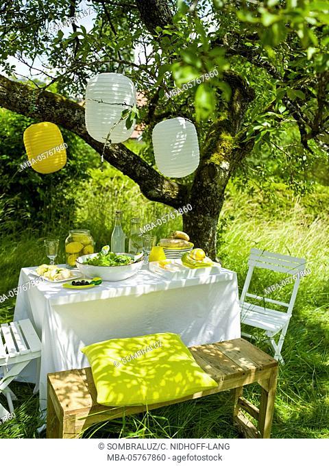 Lemon buffet in the garden