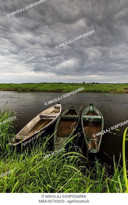 Europe, Poland, Podlaskie Voivodeship, Narew National Park, Waniewo