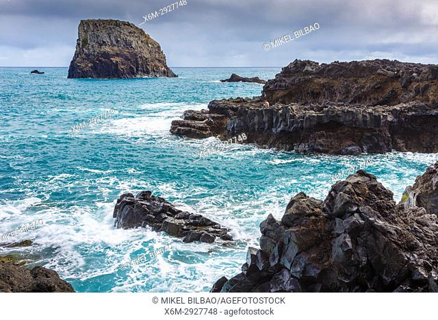 Rocky coastline. Porto da Cruz. Madeira, Portugal, Europe