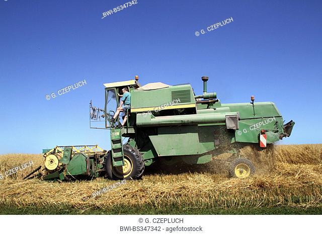 corn harvester on oat field, Germany