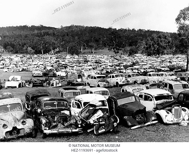 Old cars in Flynn's wrecking yard, Cooma, New South Wales, Australia, 1973