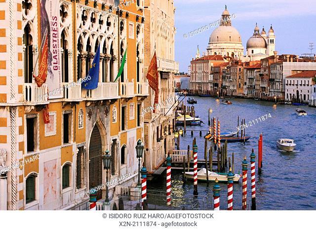 Grand Canal and Basilica de Santa Maria della Salute. Venice. Veneto. Italy