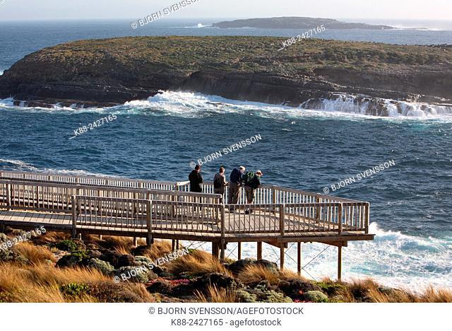 Viewing platfrom at Cape Du Cuoedic on Kangaroo Island, South Australia