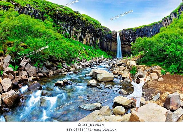 Waterfall Svartifoss in Skaftafell
