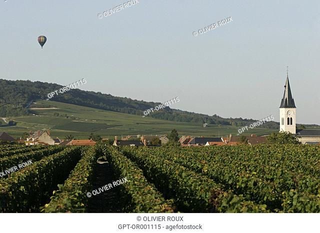 HOT-AIR BALLOON FLYING OVER VINEYARDS, MARNE (51), CHAMPAGNE-ARDENNE, FRANCE