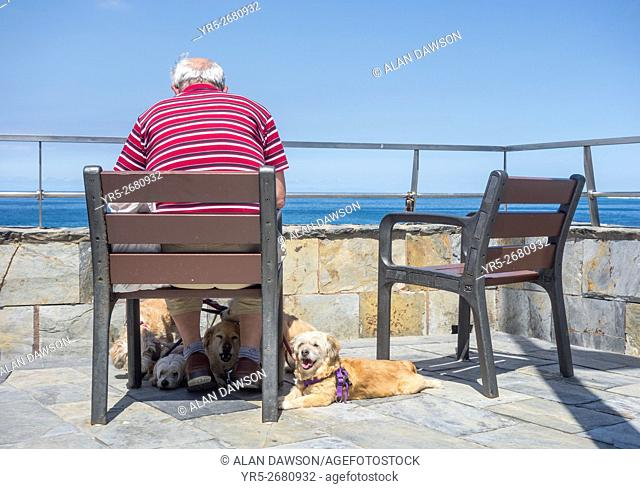 Las Palmas, Gran Canaria, Canary Islands, Spain. Man reading newspaper overlooking the sea as his five dogs sit at his feet