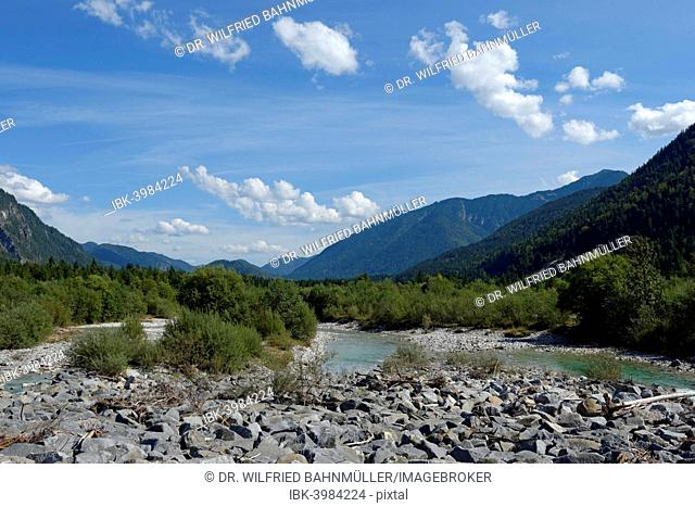 Upper Isar River, at the sediment barrier, nature reserve, Isar valley, Tölzer Land, Upper Bavaria, Bavaria, Germany