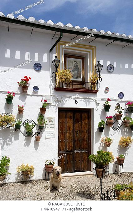 Spain, Europe, Andalucia, Region, Cordoba, Province, Priego de Cordoba, City, San Antonio, Square, architecture, flowers, patio, spring, touristic, traditional