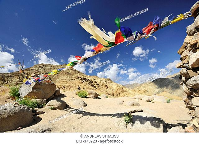 Prayer flags at pass, trekking from monastery of Likir to Yangtang, Ladakh, Jammu and Kashmir, India