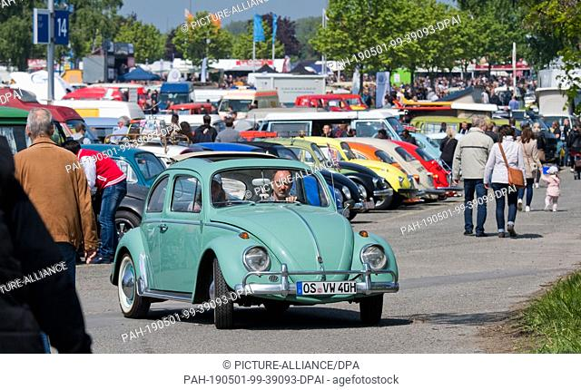 """01 May 2019, Lower Saxony, Hanover: VW beetles are standing on a parking lot at the 36th """"""""Maikäfertreffen"""""""". More than 3000 owners of beetles and other VW..."""