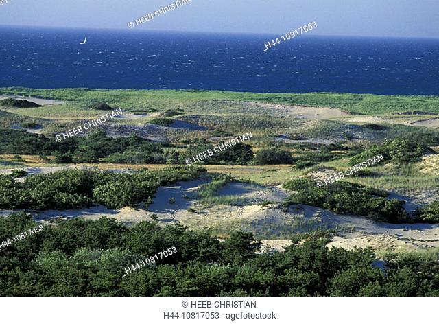 10817053, scenery, sand dunes, dunes, beach, seashore, coast, sea, cape Cod, national park, Seashore, Massachusetts, USA, United States, America