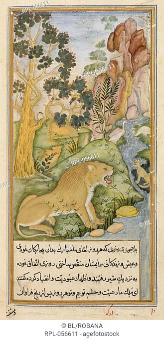 The plains near Baghdad where the animals were dominated by a lion. A miniature painting from a seventeenth century manuscript of Anvar-i Suhayli a version of...