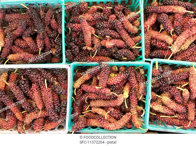 Mulberries in plastic baskets seen from above